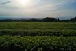 110926 米子の景色 壺瓶山から.jpg
