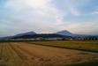110928 大山と収穫を終えた田.jpg