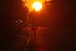 111128 夕日の沈む方向へ .jpg