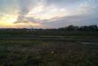 111129 夕日と佐陀川の河原.jpg