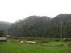 120318 雨で霞む壺瓶山.jpg