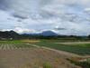 120719 大山と特急列車.jpg
