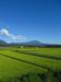 120820 鮮やかな空と田.jpg
