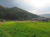 121011 上淀廃寺の風景.jpg