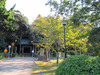 121016 秋の日吉神社.jpg