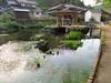 121017 豊かな湧き水 本宮の泉.jpg
