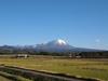 121116 冠雪 伯耆富士 大山.jpg