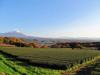121125 大山と麓の紅葉.jpg