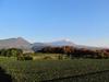 121125 大山と山々の紅葉.jpg