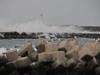 121226 海風強い海岸.jpg