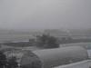 130127 激しく降る雪.jpg
