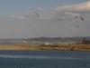 130303 日野川河口のパラモーター.jpg