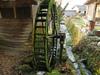 130307 緑のコケ 水車.jpg
