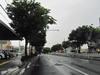 130620 雨の431号 ケヤキ通り.jpg