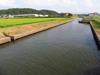 130817 塩川河口近くの水路.jpg