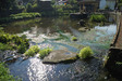 130824 本宮の泉.jpg