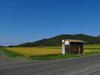130910 天の真名井近くのバス停.jpg