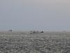140109 美保湾内の漁船.jpg