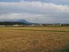 140918 稲刈りの終わった田.jpg