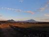 141116 夕日のあたる大山の冠雪.jpg