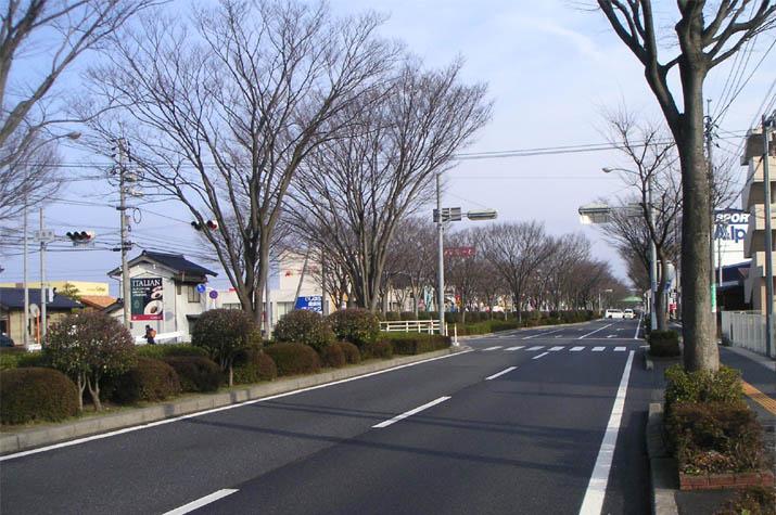 090204 431号線米子市西福原辺り.jpg