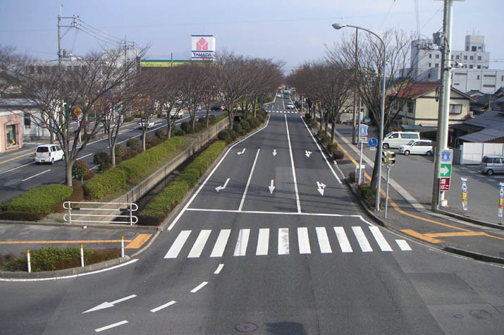 090211 けや木通り.jpg