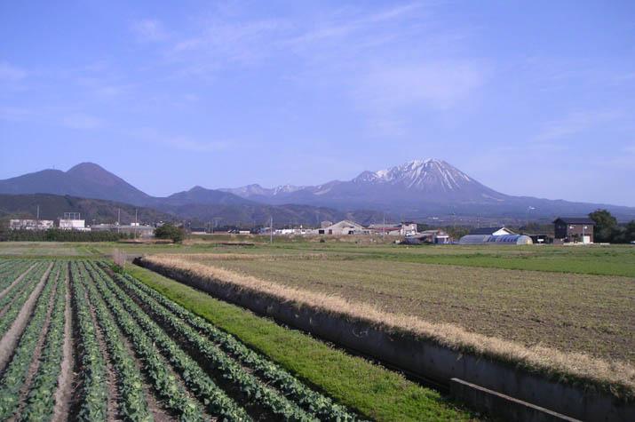 090321のどかな景色と大山.jpg