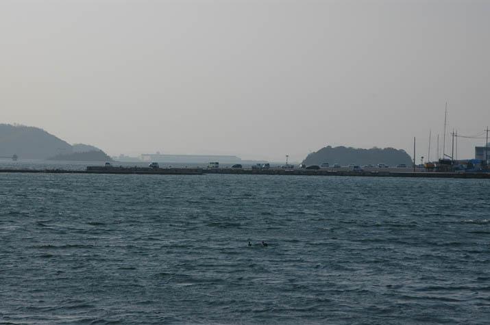 090413 中海の防波堤?.jpg