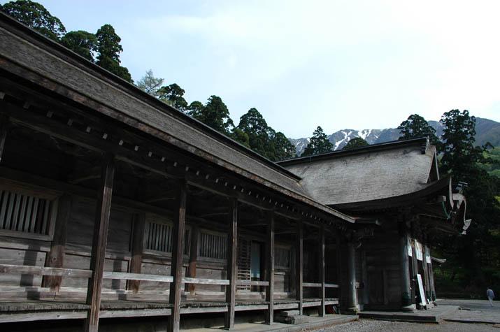 090505大神山神社奥宮へと繋がる山道.jpg