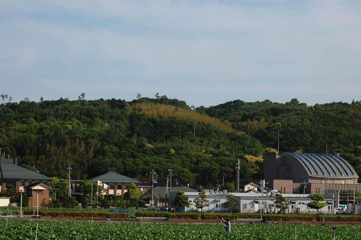 090529淀江支所と文化センター.jpg
