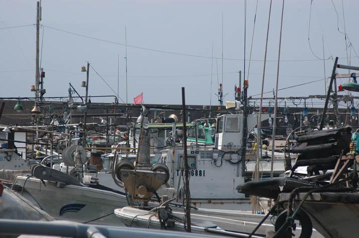 090604並ぶ漁船 淀江漁港.jpg