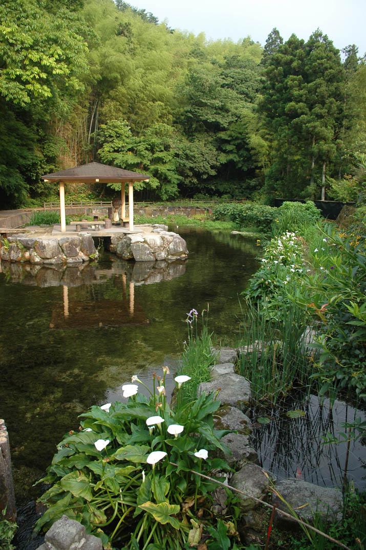 090613本宮の泉.jpg