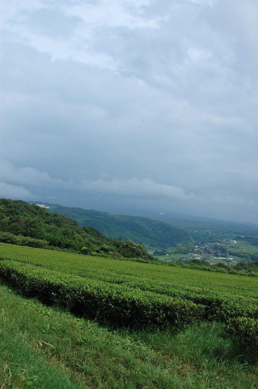 090702 雲に隠れた大山.jpg