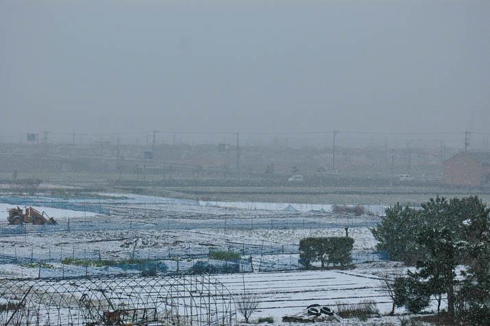 090719雪の降った日.jpg