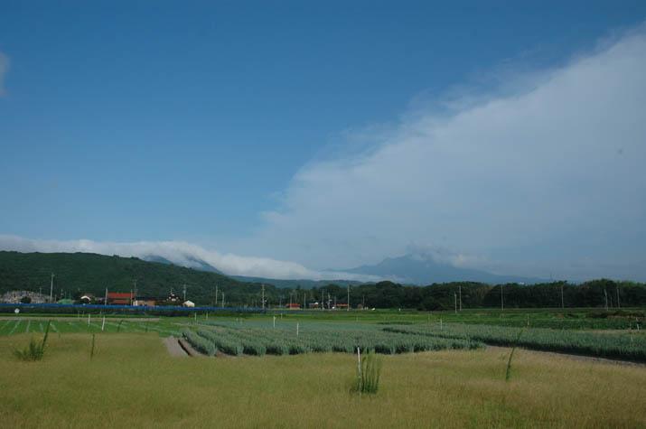 090805 青空と雲と大山.jpg