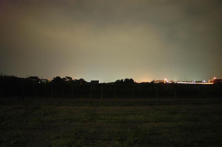 090812 夜の畑.jpg