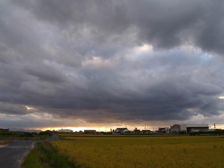 090919 金色の夕日と雲と黄色い稲.jpg