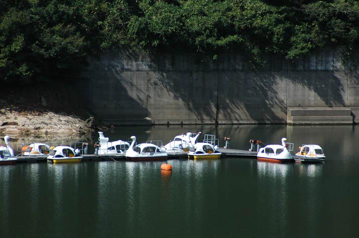 091109 緑水湖の白鳥ボート.jpg