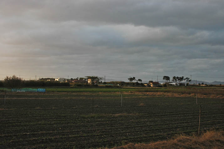 091112 夕方の厚い雲.jpg