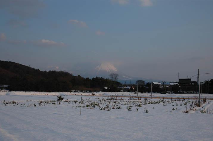 091122 雪の畑と大山.jpg