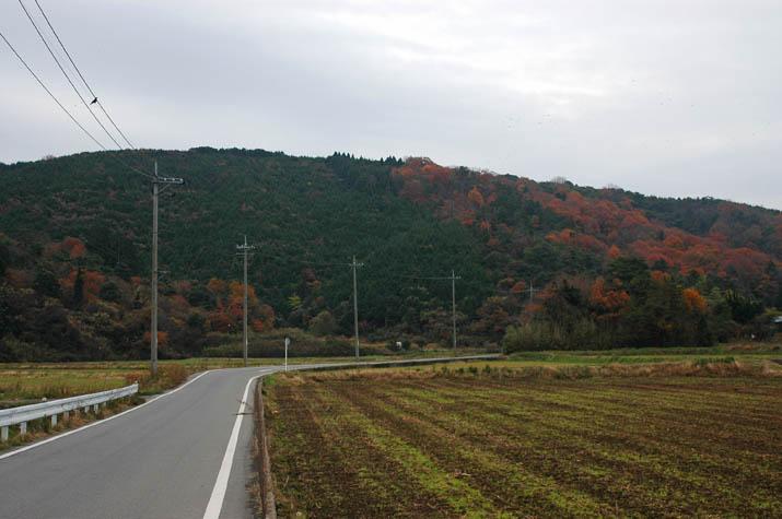 091210 壺瓶山の紅葉.jpg
