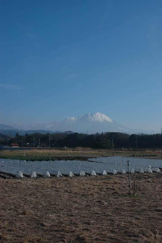 青空に映える大山.jpg