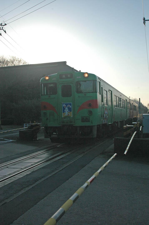 100131 うさきの普通列車.jpg