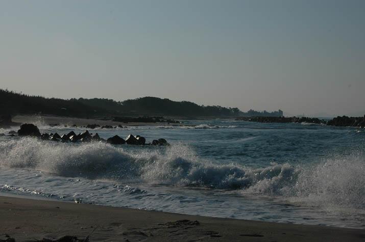 100221 佐陀の海岸.jpg