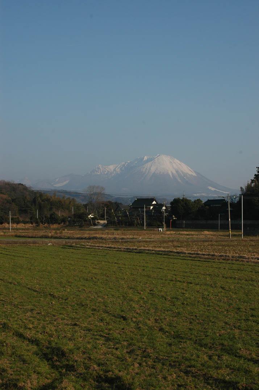 100223 新緑と大山.jpg