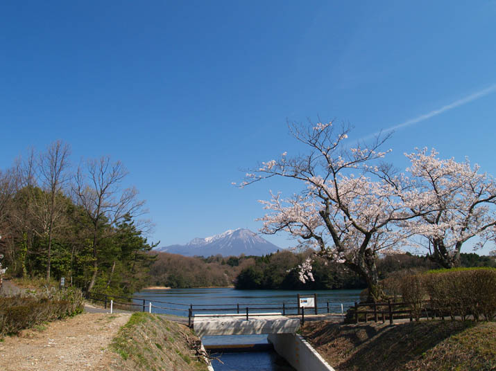 100408 岡成池で人気の撮影スポット.jpg