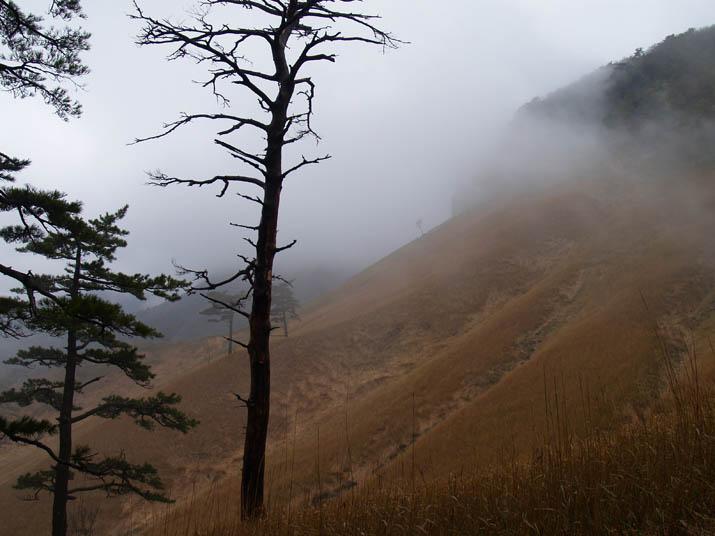100423 琴浦町の船上山.jpg