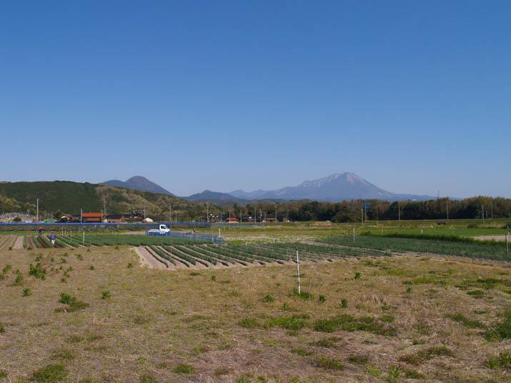 100425 今日の大山.jpg
