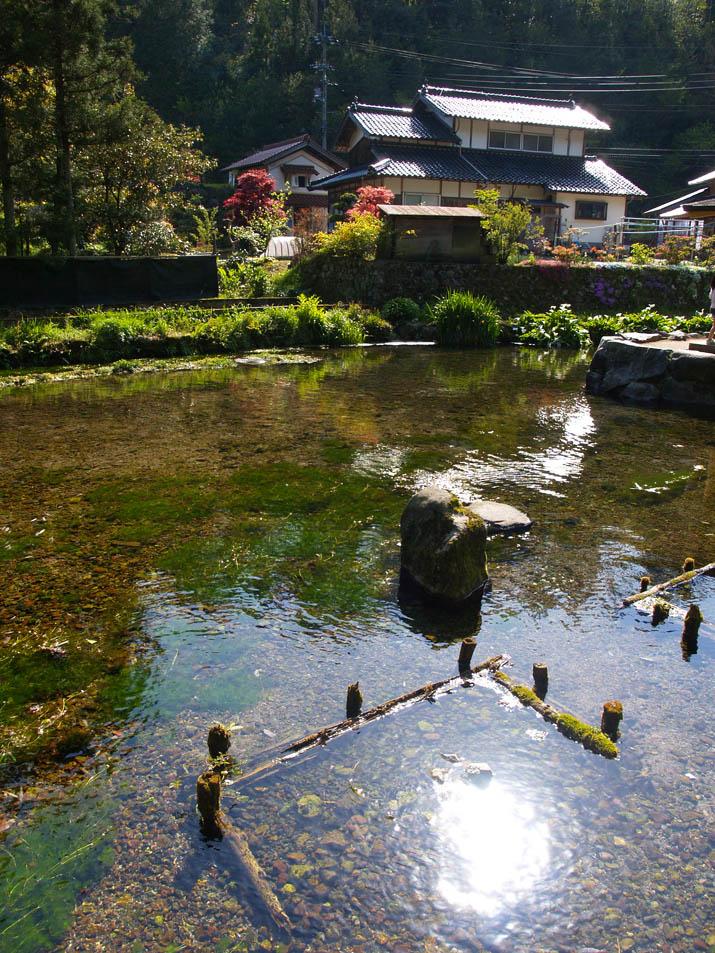 100510 本宮の泉の泉.jpg