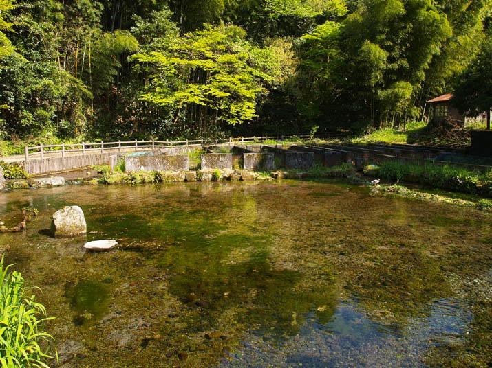 100510 長閑な本宮の泉.jpg